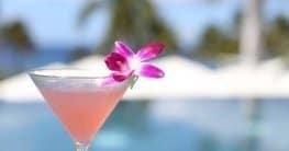 Cocktailparty: nett dekorierte Drinks - nicht nur als Hingucker