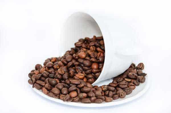 Ohne Kaffee geht keine Party - dabei ist Kaffee nicht gleich Kaffee